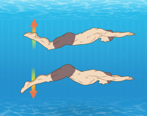 http://up.aquaswim.ir/view/3030904/swimming_dolphinkick_aquaswim.jpg